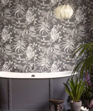 Cole & Son Ardmore Wallpaper Collection available at McKenzie & Willis
