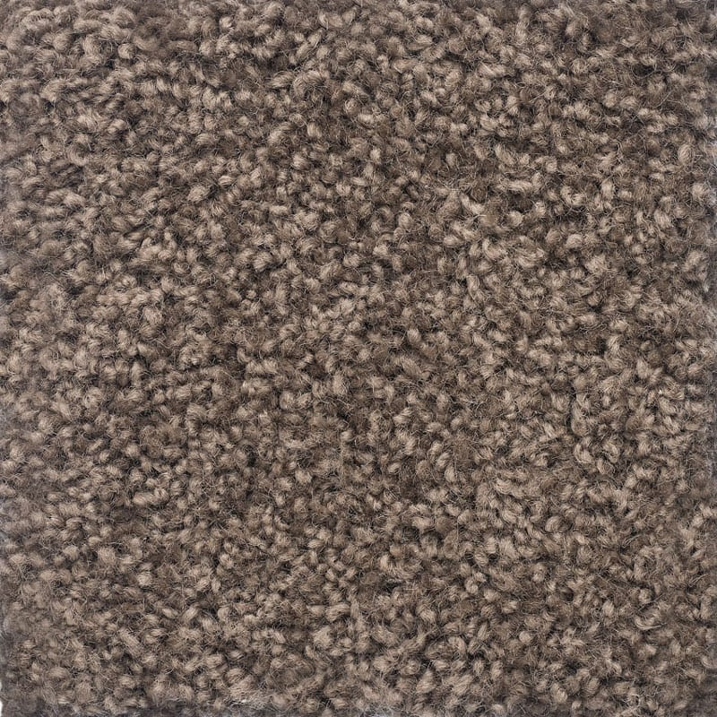 Cavailier Bremworth Charmeuse Misty Taupe Carpet