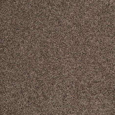 SmartStrand Simonton Beach Gabbro Carpet available at McKenzie & Willis
