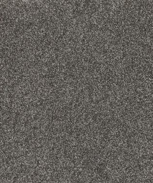 SDN Solutions Studio 4 metre wide Sheer Carpet available at McKenzie & Willis