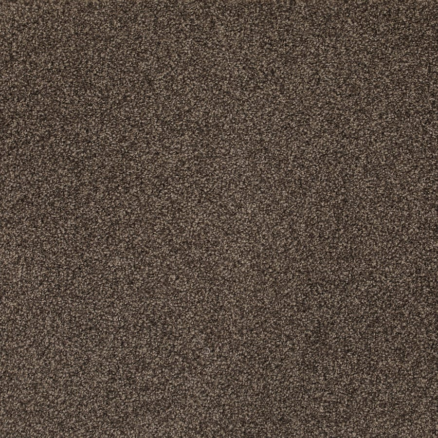 SDN Solutions Studio 4 metre wide Timeless Carpet available at McKenzie & Willis
