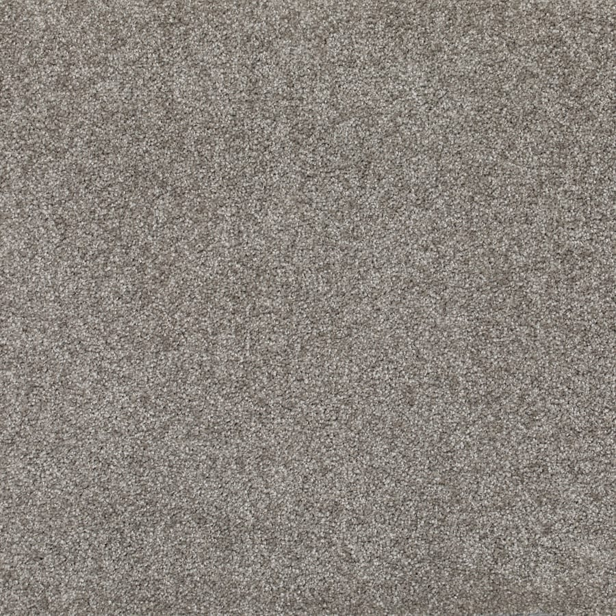SDN Solutions Studio 4 metre wide Translucent Carpet available at McKenzie & Willis