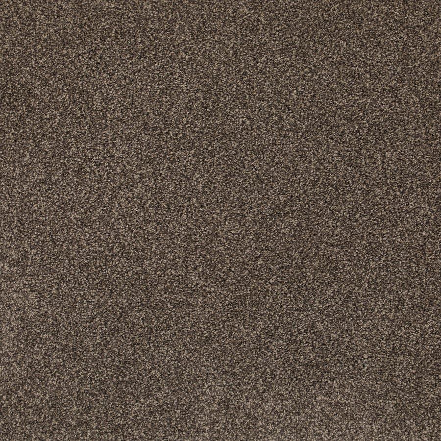 SDN Solutions Urban Timeless Carpet available at McKenzie & Willis