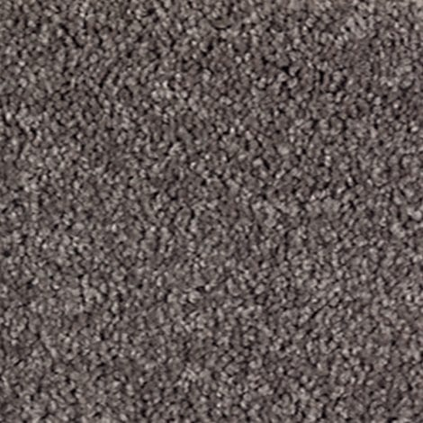 SmartStrand Wise Choice Dried Peat Carpet available at McKenzie & Willis