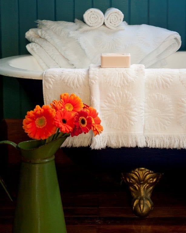 Ottoman Collection Fresh as a Daisy Towel range available at McKenzie & Willis