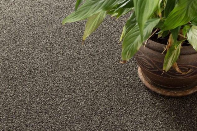 Fendalton Glandovey Rd Carpet 633x422