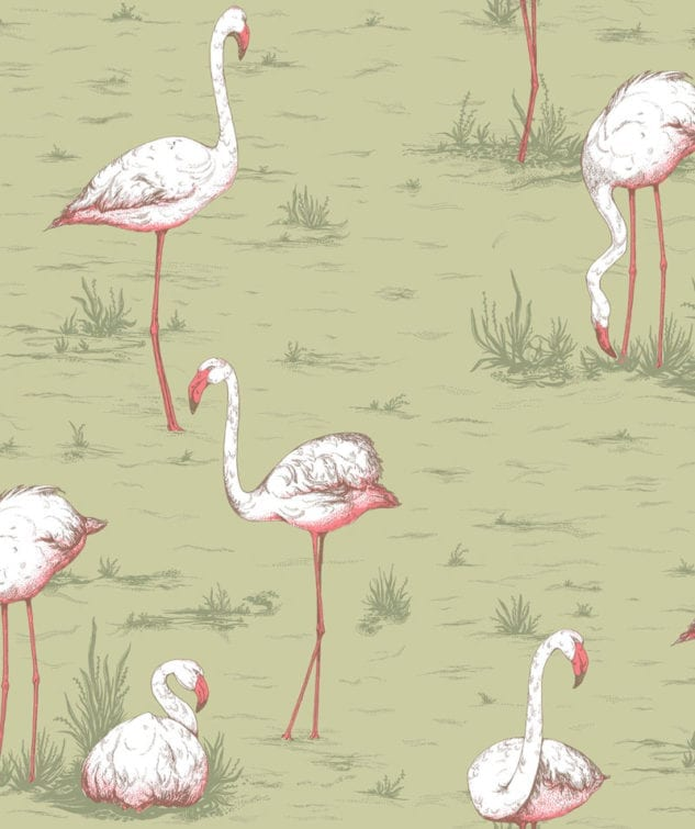Cole & Son Icons Wallpaper Flamingos