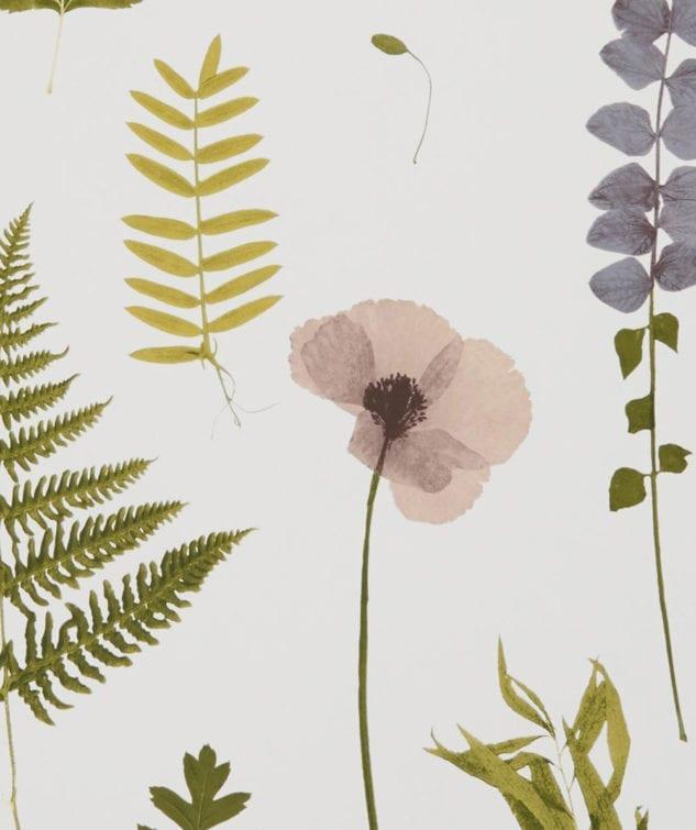 Clarke & Clarke Botanica Wallpaper Herbarium
