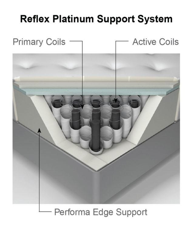 Reflex Platinum Cutaway 633x755