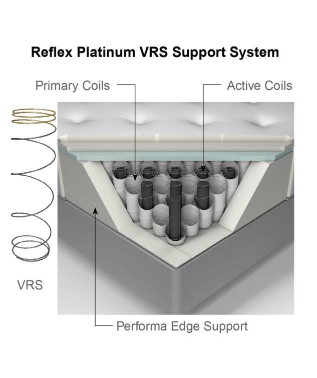 Reflex Platinum VRS Cutaway 633x755