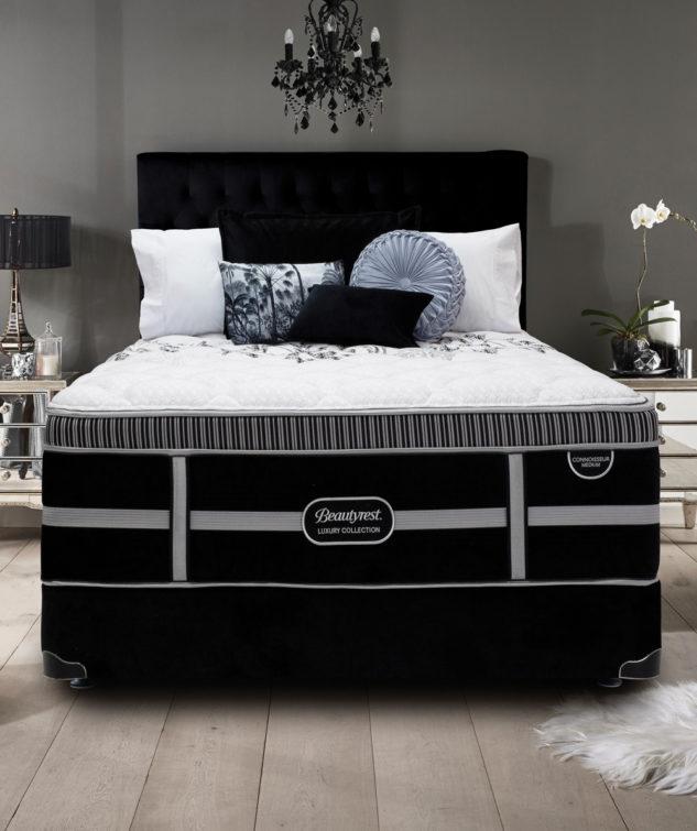 Beautyrest Connoisseur Medium Bed