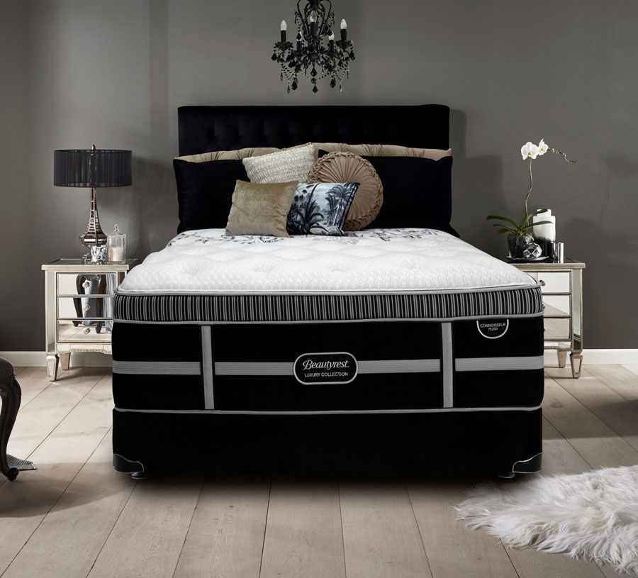 Beautyrest Connoisseur Plush Bed