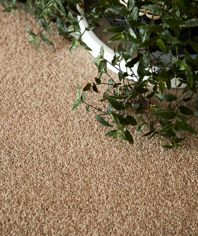 Cavalier Bremworth Valley View II Carpet Lifestyle 633x755